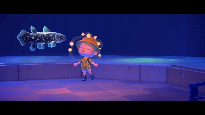 ゲーム「あつまれどうぶつの森 博物館オープン&シーラカンス釣り上げたぞ!!」_b0362459_22432204.jpg