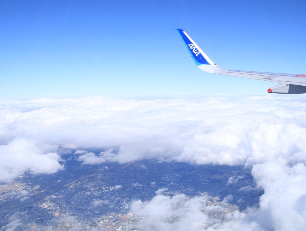 NH22便 羽田へ (用事があり)_d0202264_10351267.jpg