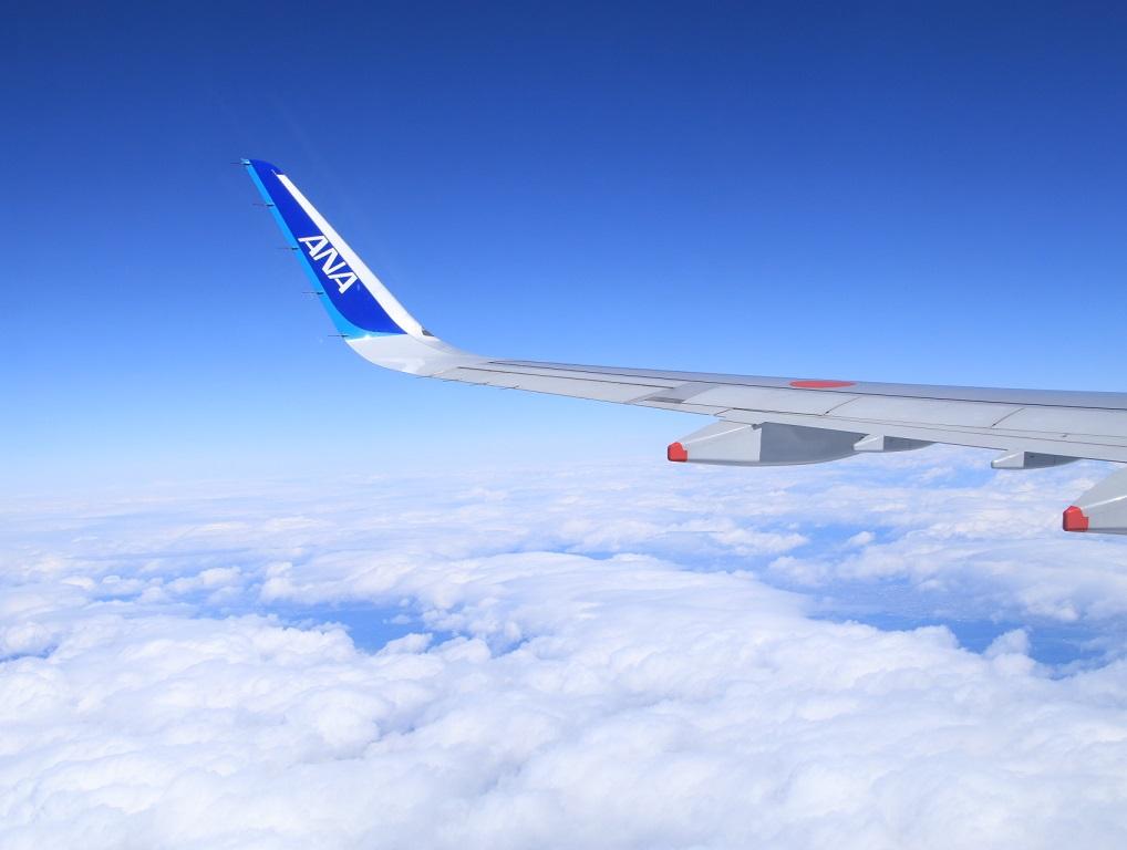 NH22便 羽田へ (用事があり)_d0202264_10363594.jpg
