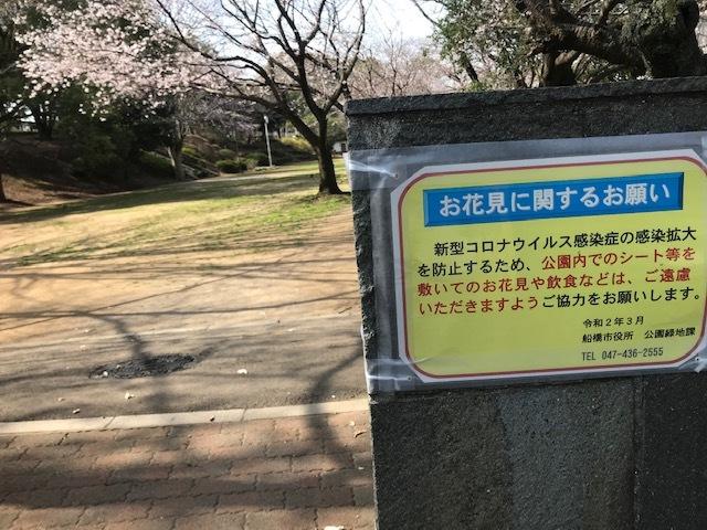 三連休は散歩三昧 ~ワカ編~_f0242002_20092319.jpg