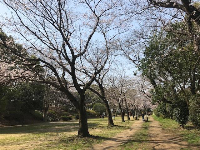 三連休は散歩三昧 ~ワカ編~_f0242002_20093273.jpg