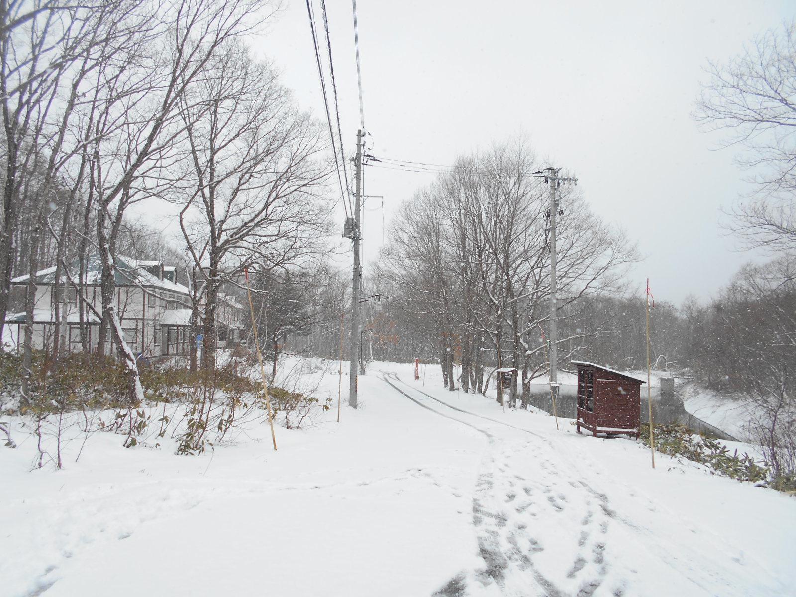 3月24日火曜日 -2度 雪_f0210811_08143918.jpg