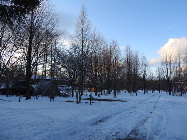 雪が降っています。ノーマルタイヤ危険!(2020年3月24日)_b0174425_21344093.jpg