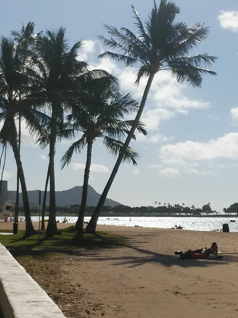 ハワイからのニュース♪_c0173826_09340255.jpg