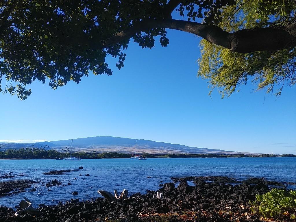 ハワイからのニュース♪_c0173826_09340263.jpg