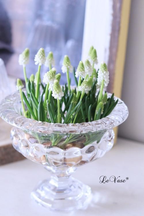 3月Living flowerクラスのアレンジ_e0158653_23582072.jpg
