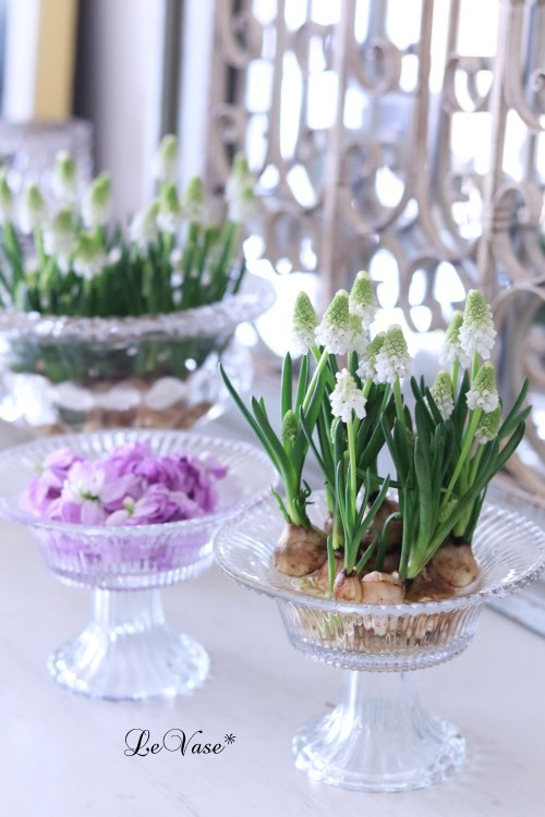 3月Living flowerクラスのアレンジ_e0158653_23583129.jpg