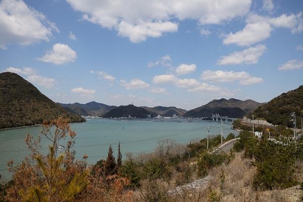 たぬき山展望台へ_b0328557_21095319.jpg