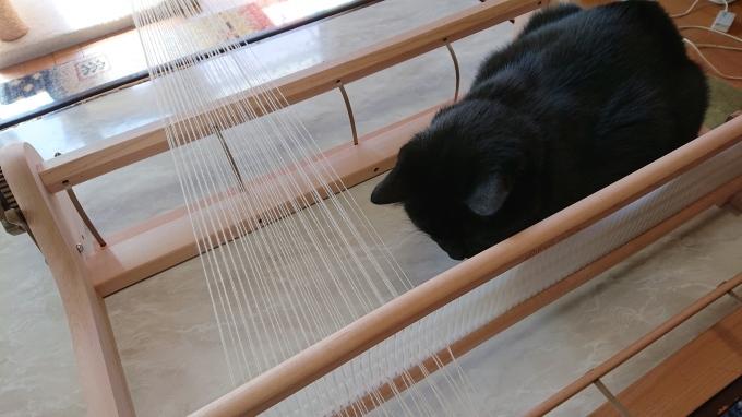初めての卓上織り機♪_f0374160_21190740.jpg