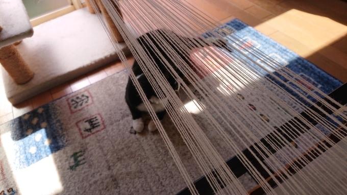 初めての卓上織り機♪_f0374160_21194737.jpg