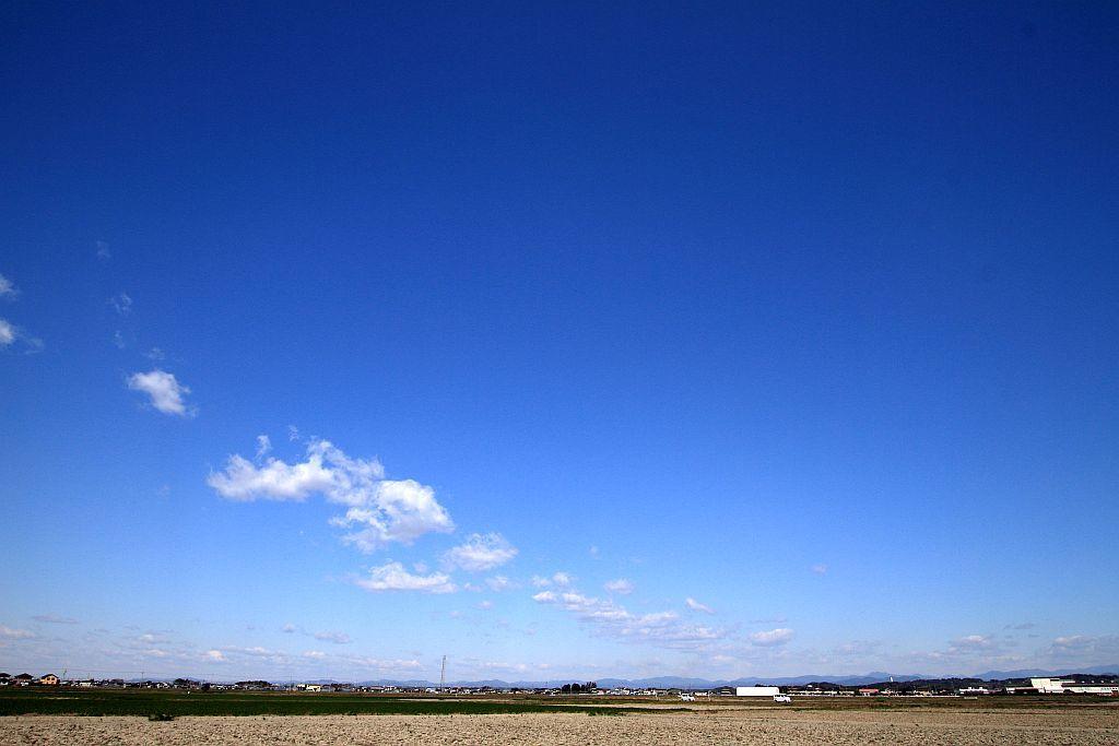 田んぼ道の散策_e0220163_14220144.jpg