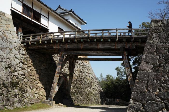 国宝彦根城、桜は? +千代神社_b0173867_17175923.jpg