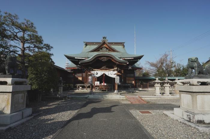 国宝彦根城、桜は? +千代神社_b0173867_17204572.jpg