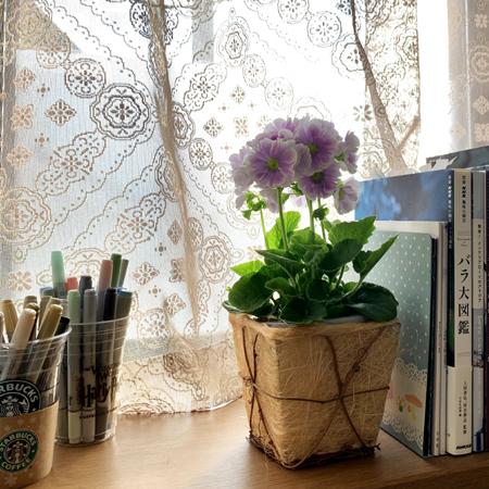 学びの杜 ののいちカレード と春の花_f0141971_16533154.jpg
