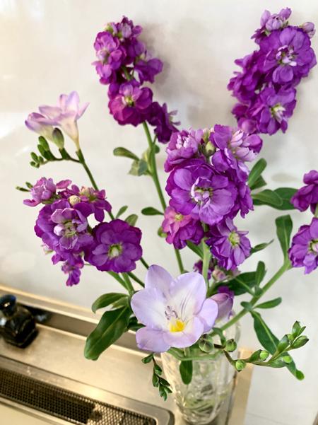 学びの杜 ののいちカレード と春の花_f0141971_16560606.jpg