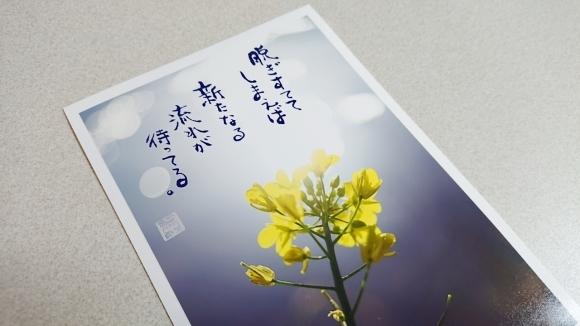 春色のスタート & 牡羊座の新月***_e0290872_22020522.jpg