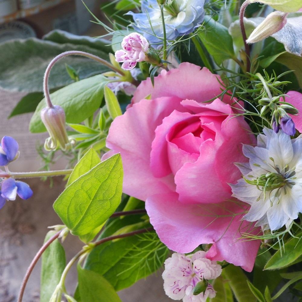 オークリーフ(イヴピアッチェと青い草花)_f0049672_12591518.jpg