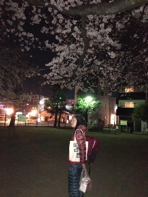 令和初朝霞花見 黒目川→浜崎公園→北朝霞公園_d0061678_11333370.jpg