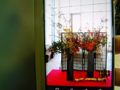 熊本から華道家さん_d0195183_00414086.jpg