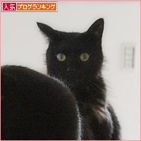 行列のできる猫の道_a0389088_03535646.jpg