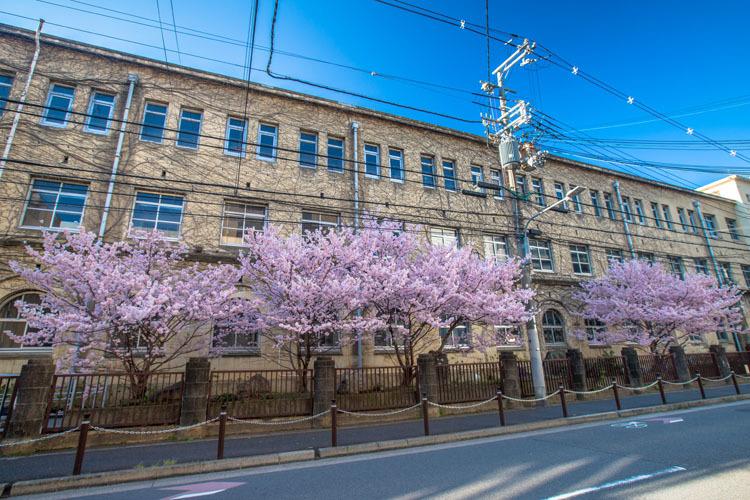 旧成徳中学校_e0051888_21462685.jpg