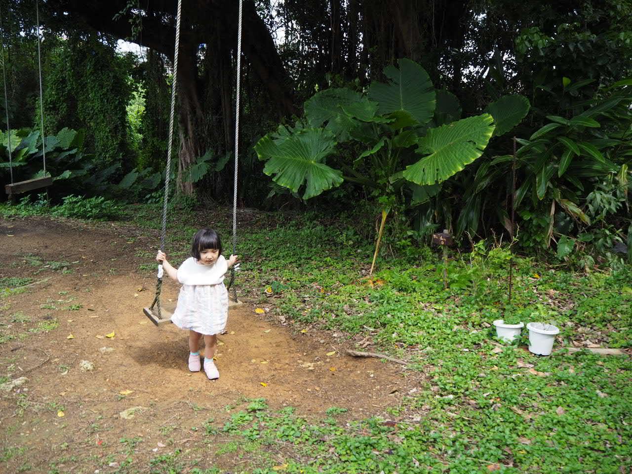 沖縄2日目 めんそーれな日_f0370091_20591192.jpg