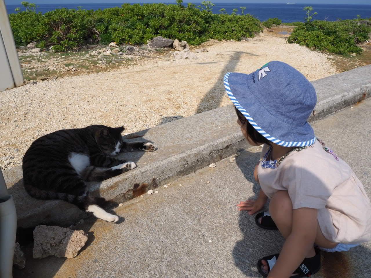 沖縄3日目 なんくるないさ一な日。_f0370091_21231476.jpg