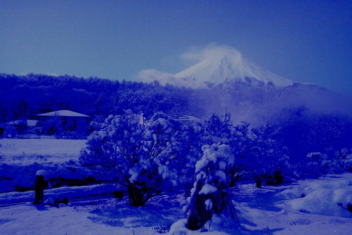 令和2年3月の富士 (17) 雪の忍野村の富士_e0344396_17103024.jpg