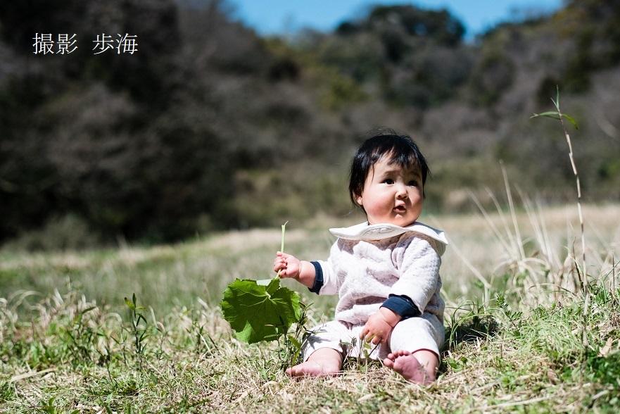 三浦半島の里山(2020年3月)~みー坊の里山あそび~_b0348205_22192365.jpg