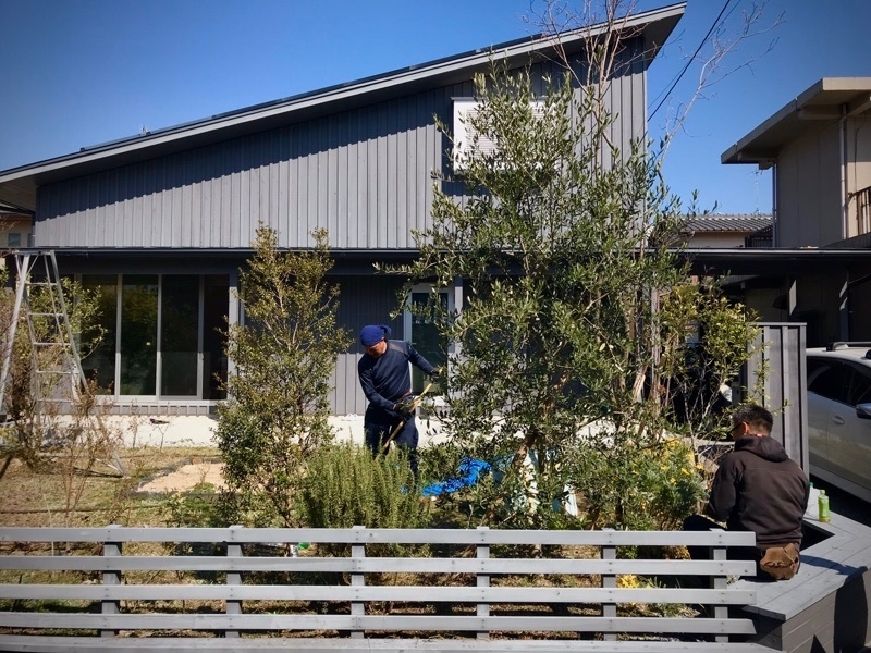庭の剪定があるとお聞きしたのでサプライズ訪問してきました。_e0029115_16481047.jpg
