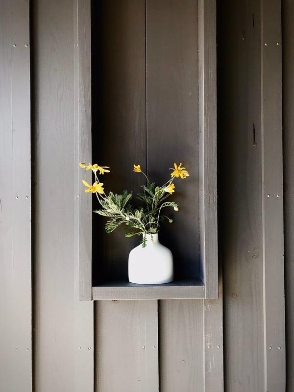 庭の剪定があるとお聞きしたのでサプライズ訪問してきました。_e0029115_16495819.jpg