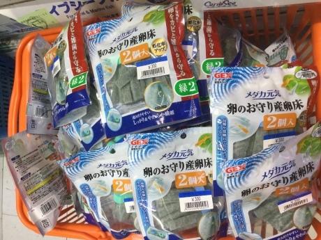 200325 熱帯魚 めだか 金魚 水草_f0189122_09443059.jpeg