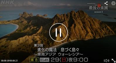 テレビ:進化の魔法 息づく島々 ~東南アジア ウォーレシア~(インドネシアのコモドドラゴン&バビルサも@「ホットスポット 最後の楽園」3/29  21:00  NHK総合/BS4K_a0054926_20533276.jpg