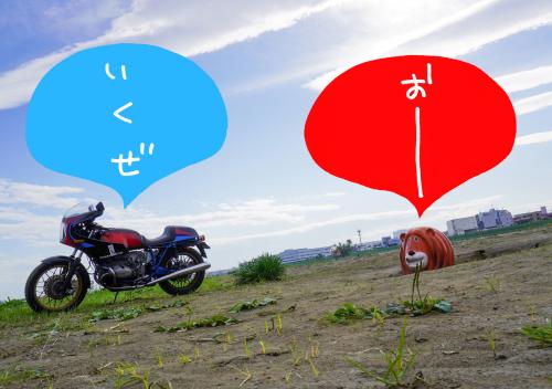 【号外】君はバイクに乗るだろう 第9号 よろしくお願いしゃ〜っす!_f0203027_21265424.jpg