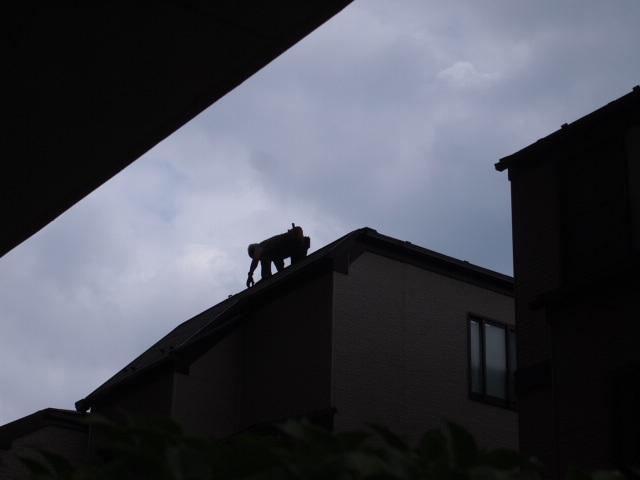 日頃観ること出来ない屋根大丈夫ですか?_a0214329_18330482.jpg