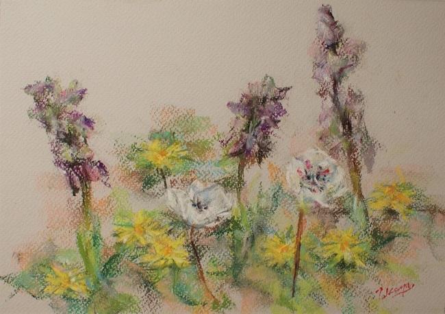 春の庭_c0236929_17295567.jpg