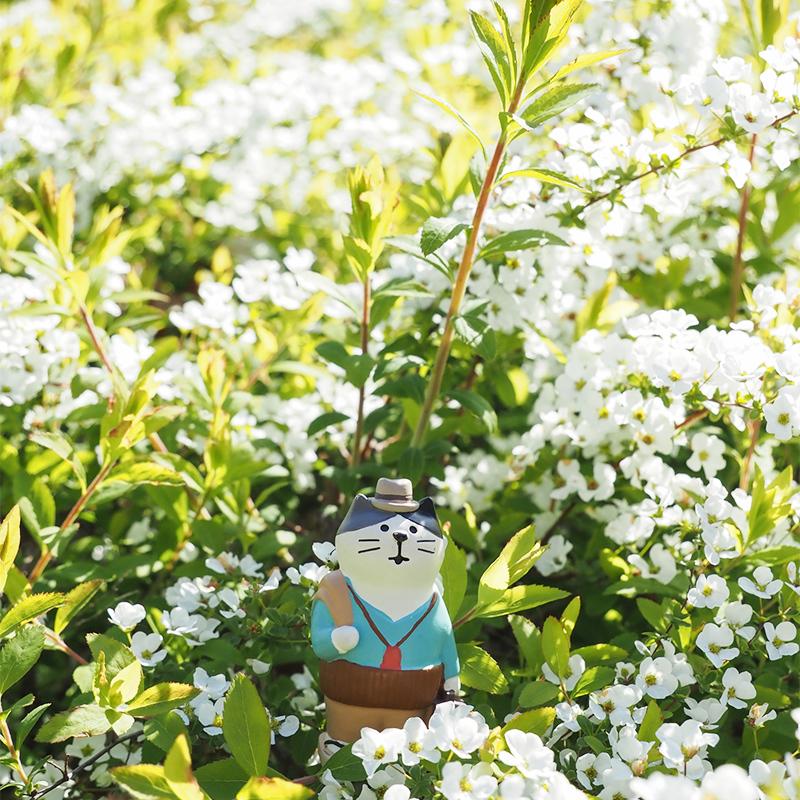 小金井の桜(ちょっと)_a0003650_22364547.jpg