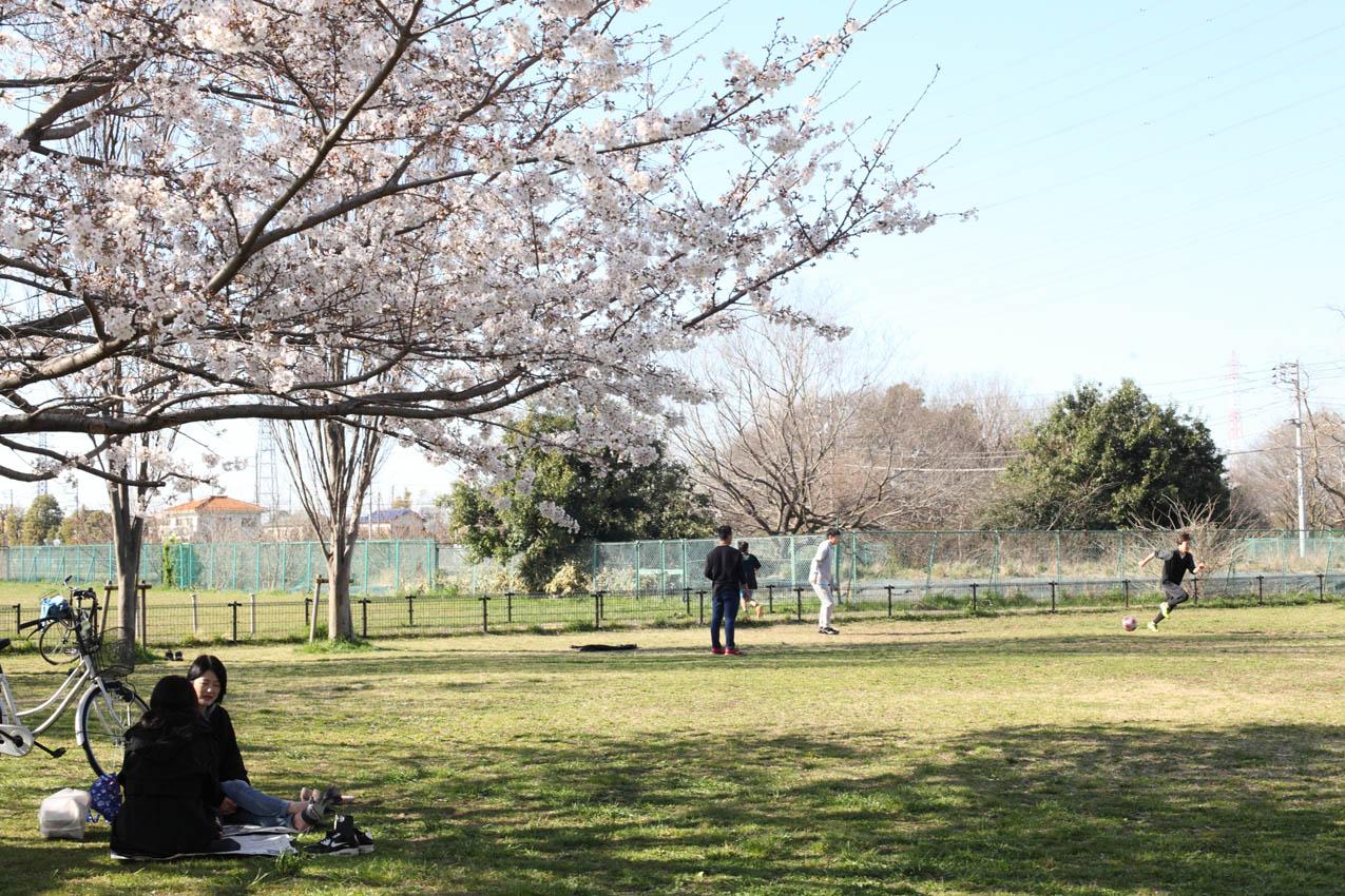 神代植物公園通り_c0299360_23551131.jpg