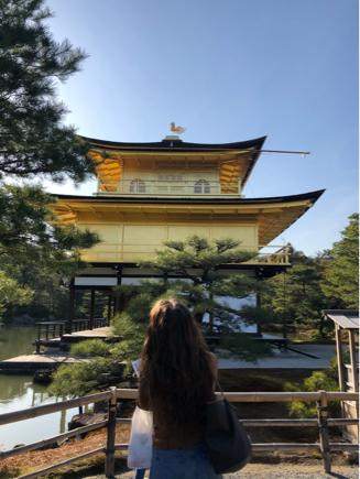 京都旅③~憧れの伏見稲荷と金閣寺_e0078071_16300831.jpg