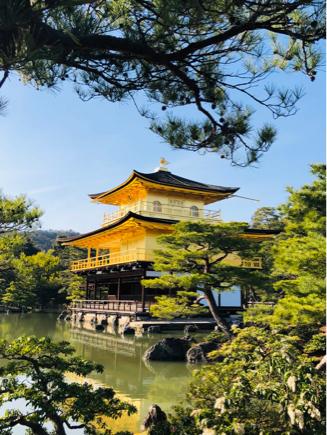 京都旅③~憧れの伏見稲荷と金閣寺_e0078071_16300855.jpg