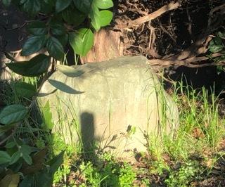附中歴史探訪 記念碑・記念樹10_d0383872_18063753.jpeg