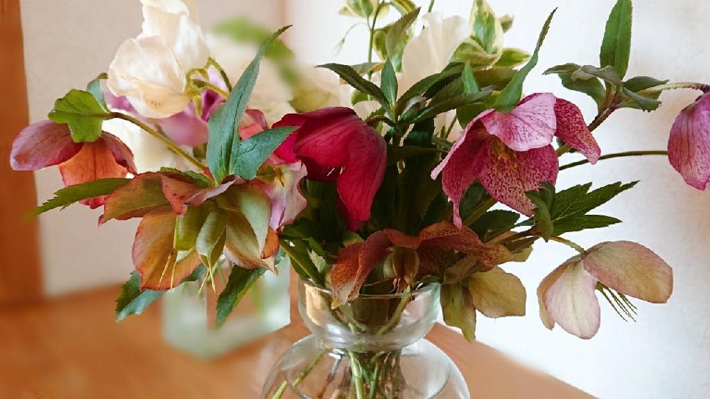 新月の祝福記念日***_e0290872_17543440.jpg