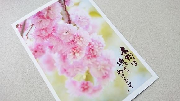 新月の祝福記念日***_e0290872_18395630.jpg