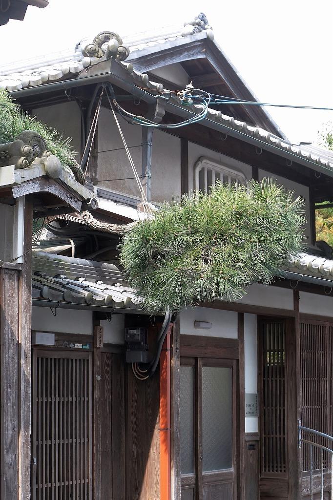 望遠で撮る城下町 福知山2_a0170082_15151205.jpg