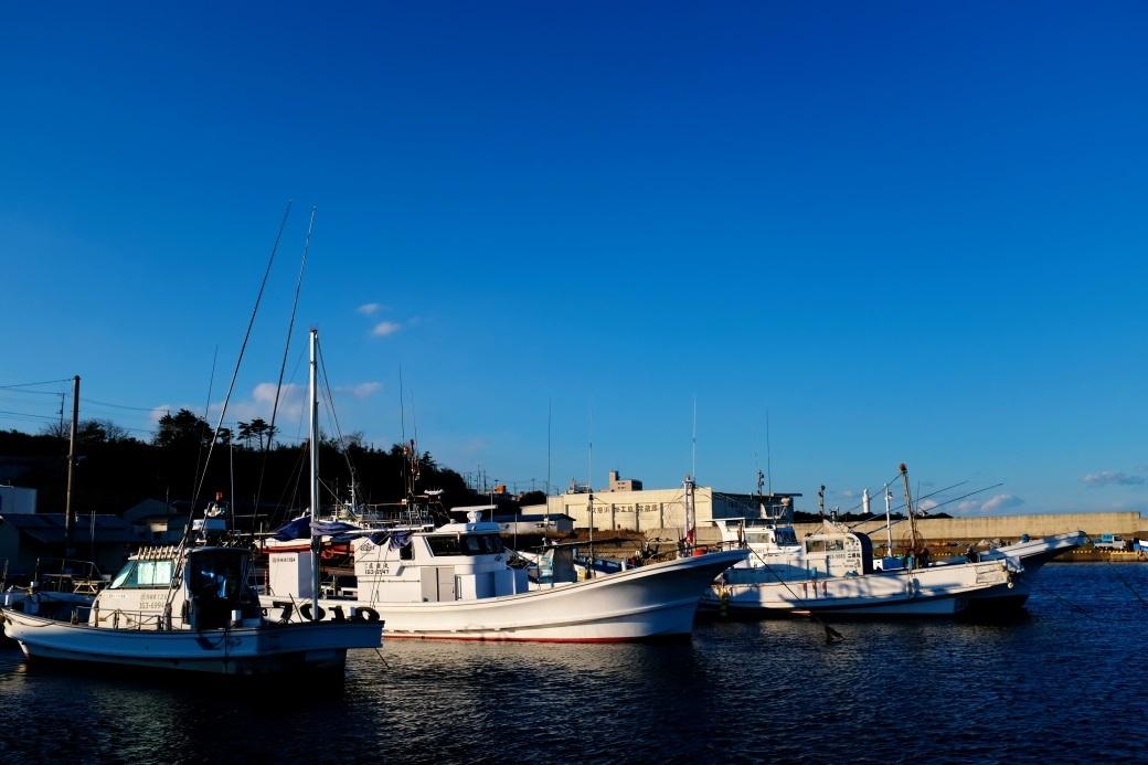 日立漁港 2020・03・24_e0143883_05242499.jpg