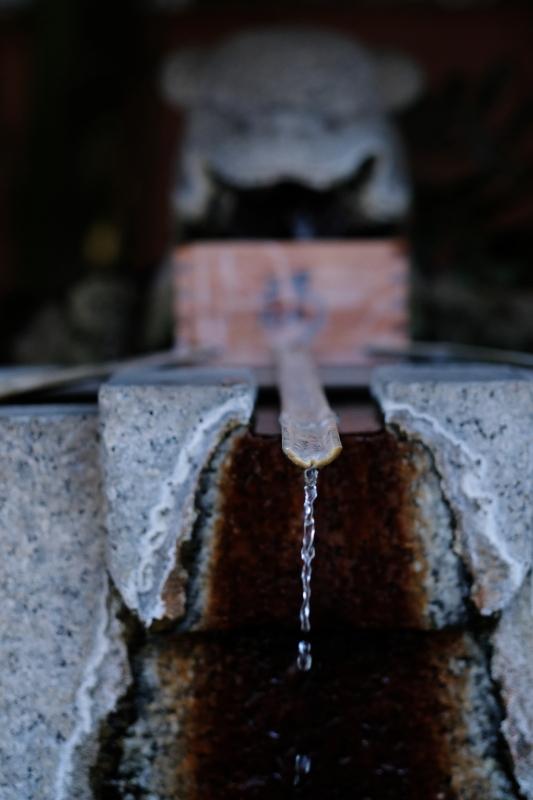 手水舎 日立市「熊野神社」 2020・03・25_e0143883_19320804.jpg