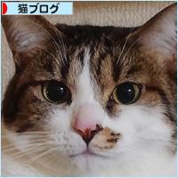 お江戸しあわせ通信!_a0389088_03400977.jpg