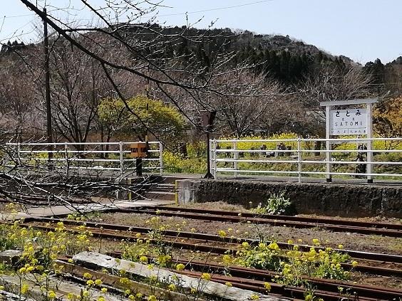 菜の花と小湊鉄道_b0129725_15305708.jpg