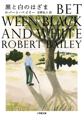 黒と白のはざま ロバート・ベイリー_a0315830_16503523.jpg
