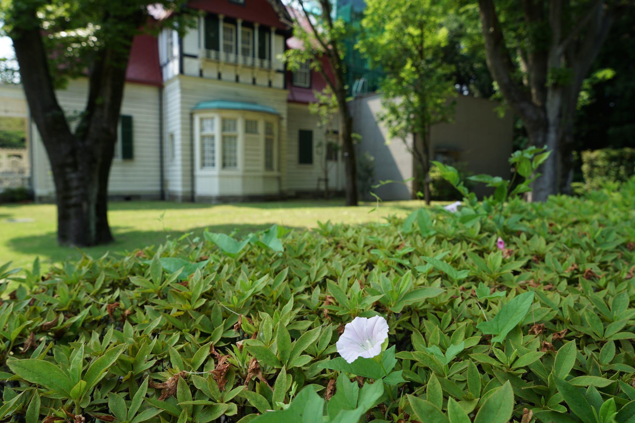 江戸東京たてもの園 35_b0360240_22211418.jpg